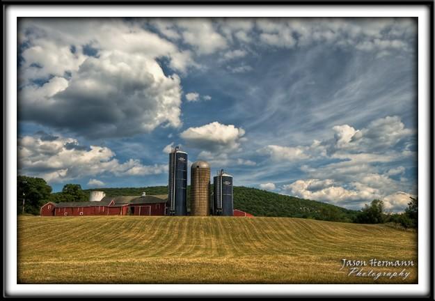 Chester Farm