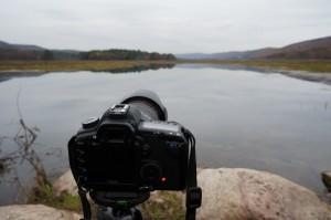 Sony Nex-5n w/ 18-55mm lens @ f/7.1, 1/50sec, 19mm, ISO 800