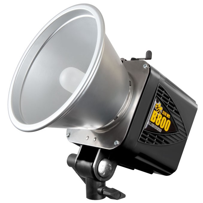 alienbees b800 flash unit