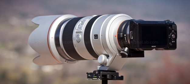 Nex-5n w/ LA-EA1 and Sony A-Mount 70-400mm f/4-5.6 G SSM Lens