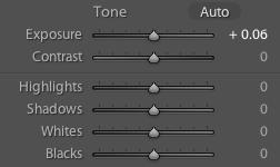 Develop Module - Tone Control