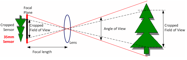 angle and factors