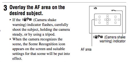 Camera Shake Indicator