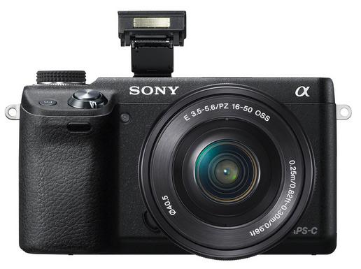 Nex-6 w/ 16-50mm lens