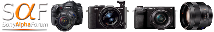 Sony Alpha Forum - Alpha, Nex and CyberShot Cameras - Powered by vBulletin
