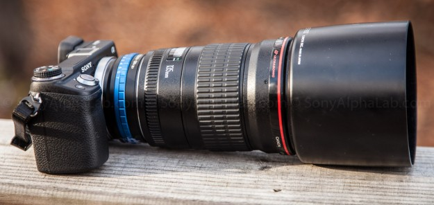 Sony Nex-6, Fotodiox Lens Adapter, Canon EF 135mm f/2 L Lens