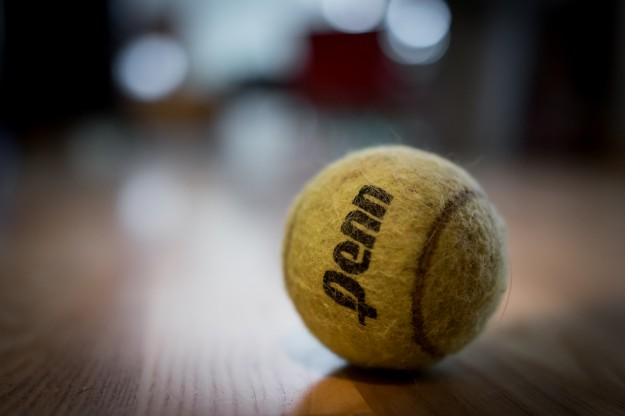Tennis ball with the RX1
