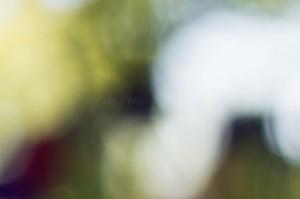 Zeiss Touit 32mm f/1.8 Lens @ f/1.8, 1/400sec, ISO 100, Handheld
