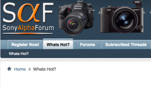 Forum - Whats Hot??