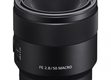 Sony FE 50mm f/2.8 Macro Lens
